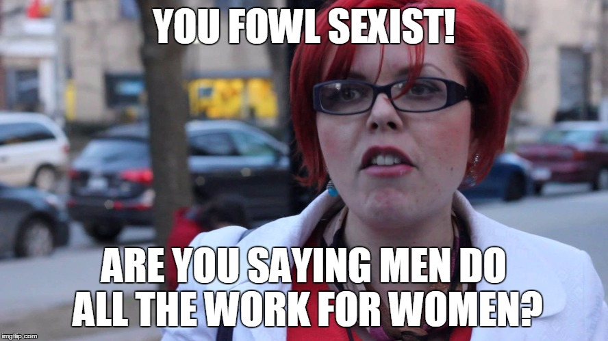 YOU FOWL SEXIST! ARE YOU SAYING MEN DO ALL THE WORK FOR WOMEN? | made w/ Imgflip meme maker