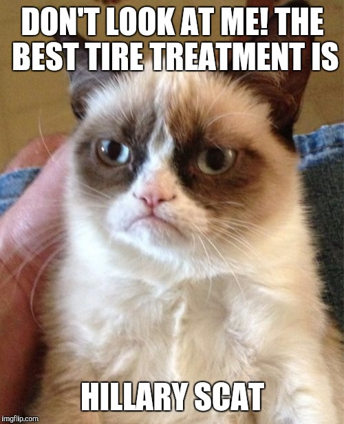 Grumpy Cat Meme | DON'T LOOK AT ME! THE BEST TIRE TREATMENT IS HILLARY SCAT | image tagged in memes,grumpy cat | made w/ Imgflip meme maker