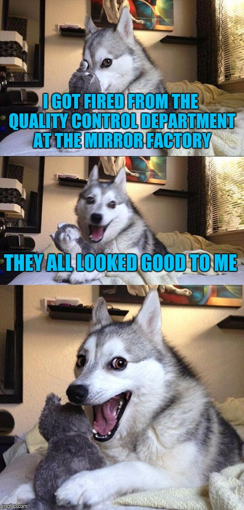 Bad Pun Dog Meme | I GOT FIRED FROM THE QUALITY CONTROL DEPARTMENT AT THE MIRROR FACTORY THEY ALL LOOKED GOOD TO ME | image tagged in memes,bad pun dog | made w/ Imgflip meme maker