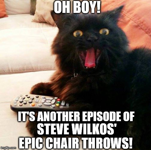 OH BOY! Cat: Steve Wilkos is a favorite of mine |  OH BOY! IT'S ANOTHER EPISODE OF; STEVE WILKOS' EPIC CHAIR THROWS! | image tagged in oh boy cat,memes,tv show,watching tv,cats,funny cats | made w/ Imgflip meme maker