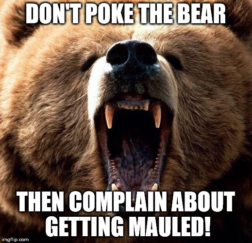 Image result for dont poke the bear