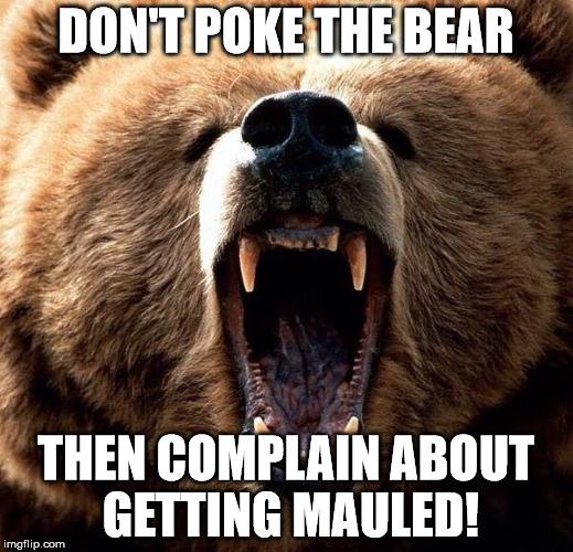 Image result for poke the bear meme