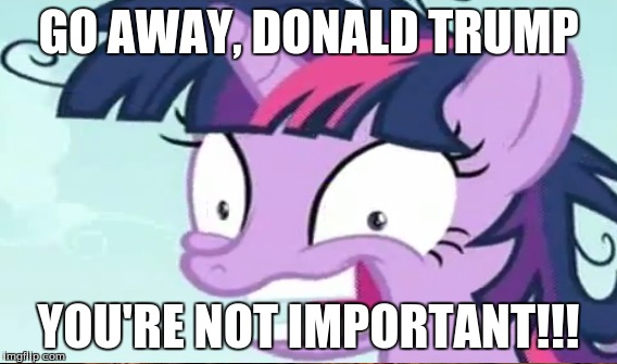 so true... | GO AWAY, DONALD TRUMP YOU'RE NOT IMPORTANT!!! | image tagged in twilight sparkle,donald trump you're fired | made w/ Imgflip meme maker