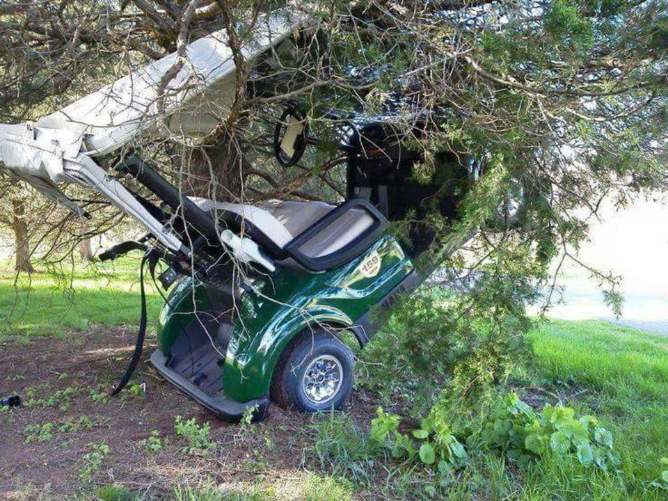 Golf Cart in Tree Blank Meme Template