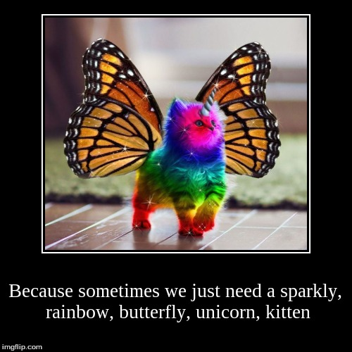 A Sparkly Rainbow Butterfly Unicorn Kitten Suicide Forum Live