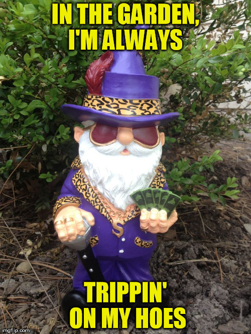 Spring Bling |  IN THE GARDEN, I'M ALWAYS; TRIPPIN' ON MY HOES | image tagged in gnome,garden,gardening,pimp | made w/ Imgflip meme maker