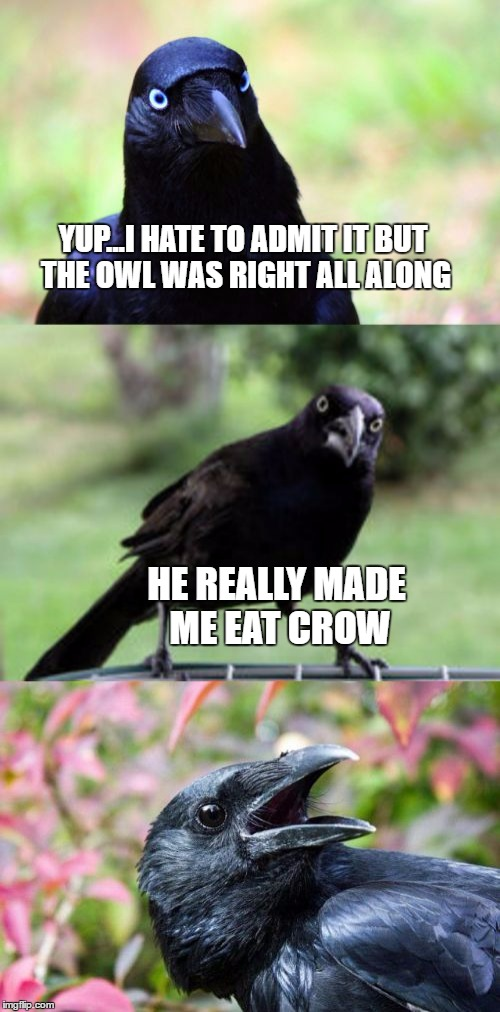 bad pun crow | YUP...I HATE TO ADMIT IT BUT THE OWL WAS RIGHT ALL ALONG HE REALLY MADE ME EAT CROW | image tagged in bad pun crow | made w/ Imgflip meme maker