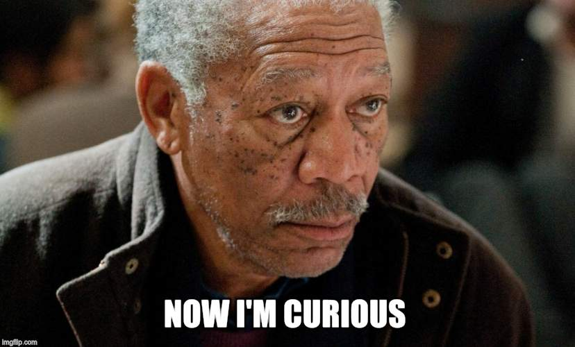 Morgan Freeman | NOW I'M CURIOUS | image tagged in morgan freeman | made w/ Imgflip meme maker