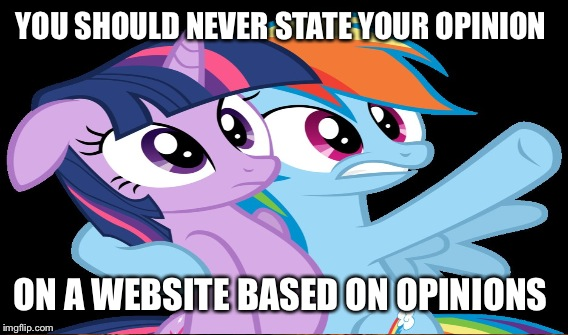 YOU SHOULD NEVER STATE YOUR OPINION ON A WEBSITE BASED ON OPINIONS | made w/ Imgflip meme maker