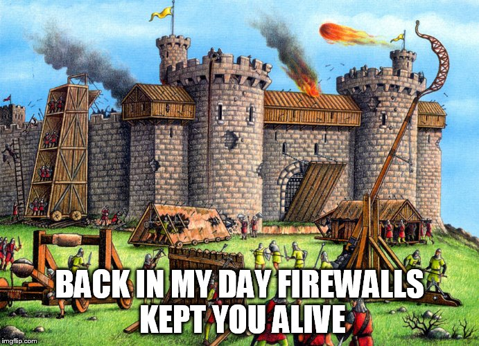BACK IN MY DAY FIREWALLS KEPT YOU ALIVE | made w/ Imgflip meme maker