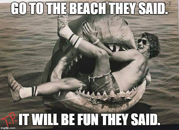 Beach,Fun | GO TO THE BEACH THEY SAID. IT WILL BE FUN THEY SAID. | image tagged in original meme,beach,shark,jaws,funny,funny meme | made w/ Imgflip meme maker