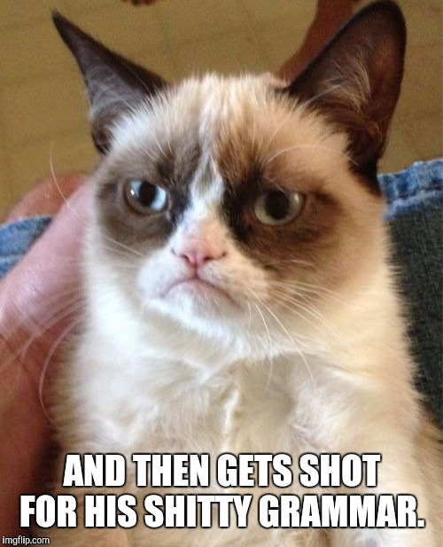 Grumpy Cat Meme | AND THEN GETS SHOT FOR HIS SHITTY GRAMMAR. | image tagged in memes,grumpy cat | made w/ Imgflip meme maker