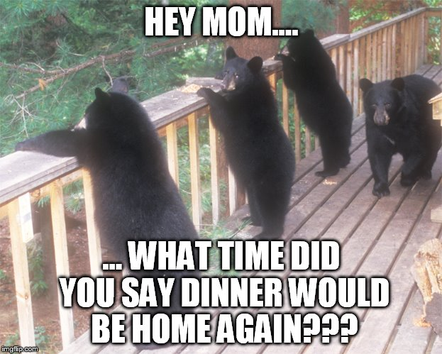 HEY MOM.... ... WHAT TIME DID YOU SAY DINNER WOULD BE HOME AGAIN??? | made w/ Imgflip meme maker