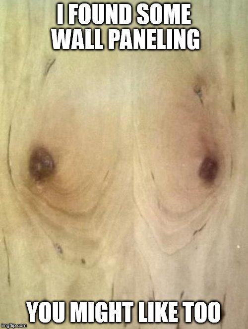 I FOUND SOME WALL PANELING YOU MIGHT LIKE TOO | made w/ Imgflip meme maker