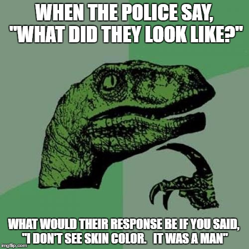 "Philosoraptor Meme | WHEN THE POLICE SAY, ""WHAT DID THEY LOOK LIKE?"" WHAT WOULD THEIR RESPONSE BE IF YOU SAID, ""I DON'T SEE SKIN COLOR.   IT WAS A MAN"" 