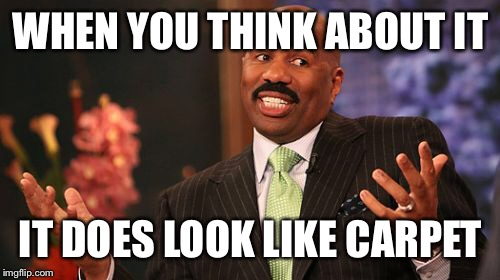 Steve Harvey Meme | WHEN YOU THINK ABOUT IT IT DOES LOOK LIKE CARPET | image tagged in memes,steve harvey | made w/ Imgflip meme maker