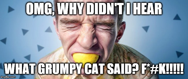 OMG, WHY DIDN'T I HEAR WHAT GRUMPY CAT SAID? F*#K!!!!! | image tagged in bite_into_it | made w/ Imgflip meme maker