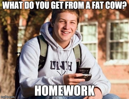 College Freshman |  WHAT DO YOU GET FROM A FAT COW? HOMEWORK | image tagged in memes,college freshman | made w/ Imgflip meme maker