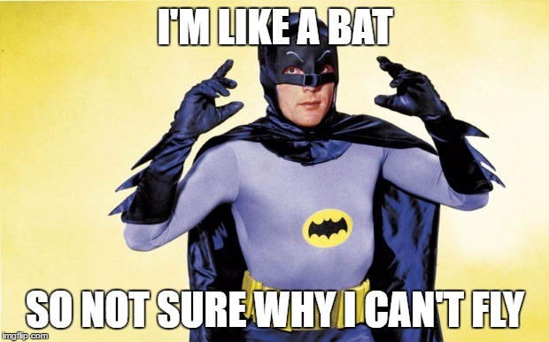 I'M LIKE A BAT SO NOT SURE WHY I CAN'T FLY | made w/ Imgflip meme maker