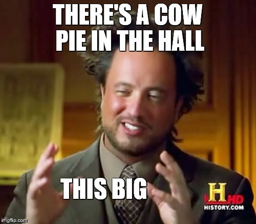 Ancient Aliens Meme | THERE'S A COW PIE IN THE HALL THIS BIG | image tagged in memes,ancient aliens | made w/ Imgflip meme maker