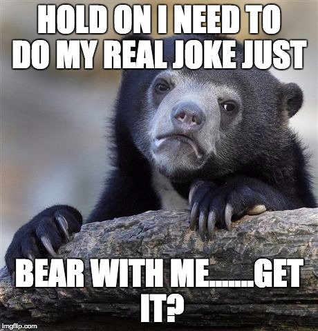 Confession Bear | HOLD ON I NEED TO DO MY REAL JOKE JUST BEAR WITH ME.......GET IT? | image tagged in memes,confession bear | made w/ Imgflip meme maker