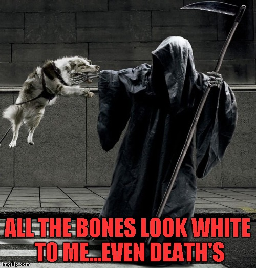 ALL THE BONES LOOK WHITE TO ME...EVEN DEATH'S | made w/ Imgflip meme maker
