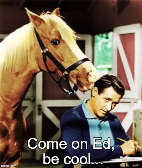 Come on Ed, be cool... | made w/ Imgflip meme maker