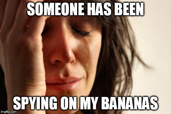First World Problems Meme | SOMEONE HAS BEEN SPYING ON MY BANANAS | image tagged in memes,first world problems | made w/ Imgflip meme maker