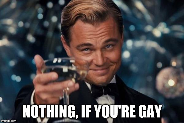 Leonardo Dicaprio Cheers Meme | NOTHING, IF YOU'RE GAY | image tagged in memes,leonardo dicaprio cheers | made w/ Imgflip meme maker