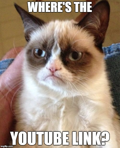 Grumpy Cat Meme | WHERE'S THE YOUTUBE LINK? | image tagged in memes,grumpy cat | made w/ Imgflip meme maker