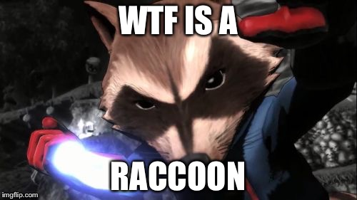 Rocket Raccoon | WTF IS A RACCOON | image tagged in memes,rocket raccoon | made w/ Imgflip meme maker