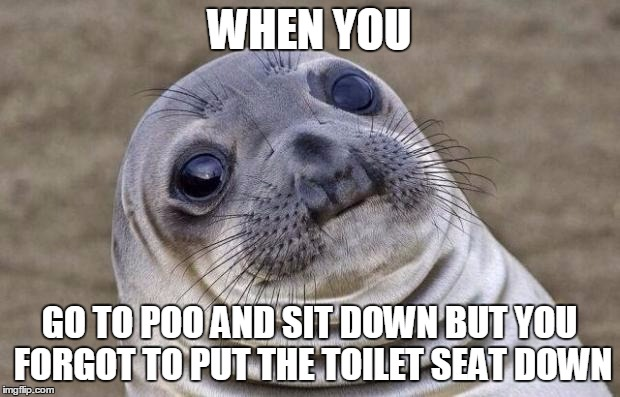Awkward Moment Sealion Meme |  WHEN YOU; GO TO POO AND SIT DOWN BUT YOU FORGOT TO PUT THE TOILET SEAT DOWN | image tagged in memes,awkward moment sealion | made w/ Imgflip meme maker