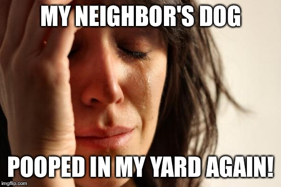 First World Problems Meme | MY NEIGHBOR'S DOG POOPED IN MY YARD AGAIN! | image tagged in memes,first world problems | made w/ Imgflip meme maker