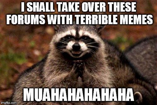Evil Plotting Raccoon Meme | I SHALL TAKE OVER THESE FORUMS WITH TERRIBLE MEMES MUAHAHAHAHAHA | image tagged in memes,evil plotting raccoon | made w/ Imgflip meme maker