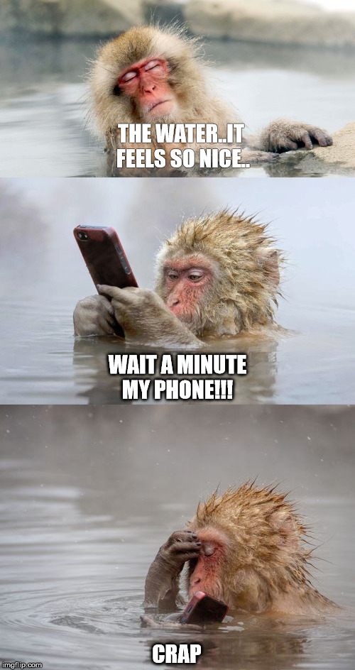 Monkey phone |  THE WATER..IT FEELS SO NICE.. WAIT A MINUTE MY PHONE!!! CRAP | image tagged in monkey,funny,water,phone | made w/ Imgflip meme maker