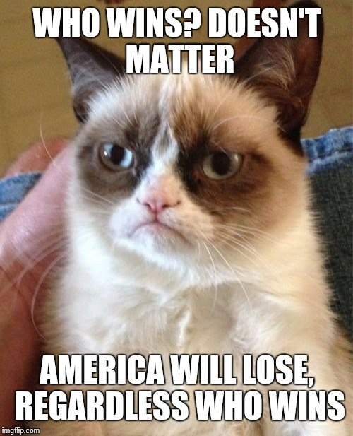 Grumpy Cat Meme | WHO WINS? DOESN'T MATTER AMERICA WILL LOSE, REGARDLESS WHO WINS | image tagged in memes,grumpy cat | made w/ Imgflip meme maker