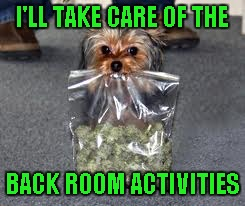 I'LL TAKE CARE OF THE BACK ROOM ACTIVITIES | made w/ Imgflip meme maker