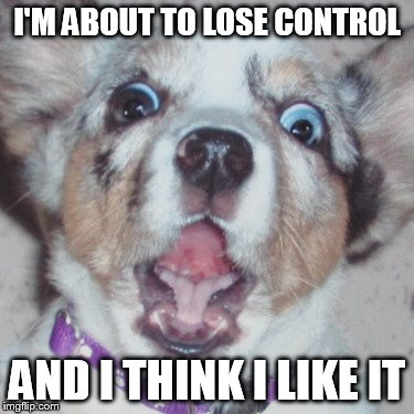 I'M ABOUT TO LOSE CONTROL AND I THINK I LIKE IT | made w/ Imgflip meme maker
