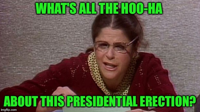 WHAT'S ALL THE HOO-HA ABOUT THIS PRESIDENTIAL ERECTION? | made w/ Imgflip meme maker