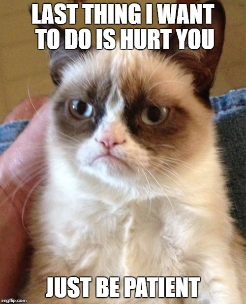 Grumpy Cat Meme | LAST THING I WANT TO DO IS HURT YOU JUST BE PATIENT | image tagged in memes,grumpy cat | made w/ Imgflip meme maker