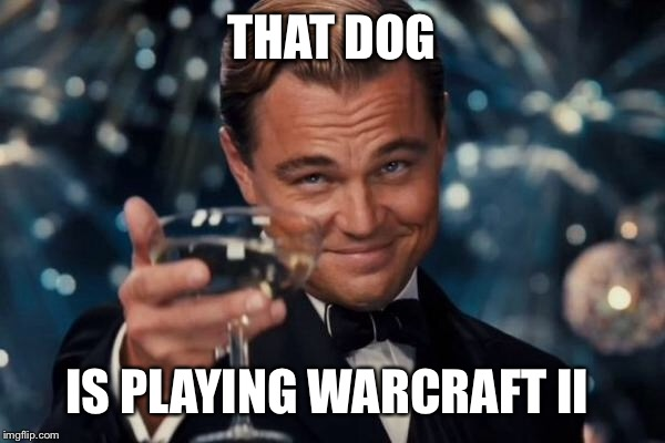 Leonardo Dicaprio Cheers Meme | THAT DOG IS PLAYING WARCRAFT II | image tagged in memes,leonardo dicaprio cheers | made w/ Imgflip meme maker