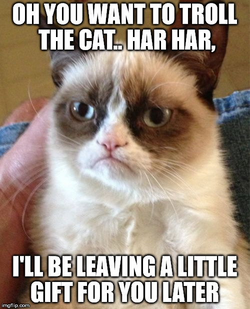 Grumpy Cat Meme | OH YOU WANT TO TROLL THE CAT.. HAR HAR, I'LL BE LEAVING A LITTLE GIFT FOR YOU LATER | image tagged in memes,grumpy cat | made w/ Imgflip meme maker