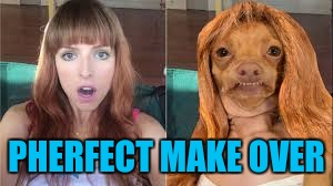 The best make over? THE PHERFECT MAKEOVER! | PHERFECT MAKE OVER | image tagged in memes,makeover,tuna dog | made w/ Imgflip meme maker