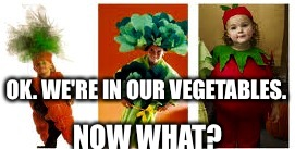 OK. WE'RE IN OUR VEGETABLES. NOW WHAT? | made w/ Imgflip meme maker