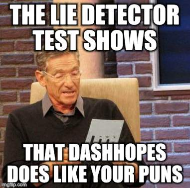 Maury Lie Detector Meme | THE LIE DETECTOR TEST SHOWS THAT DASHHOPES DOES LIKE YOUR PUNS | image tagged in memes,maury lie detector | made w/ Imgflip meme maker