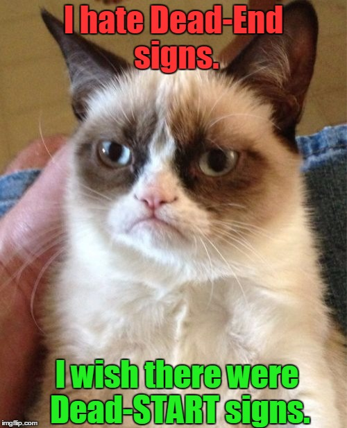 If you pass a Dead-End sign, you're death will end, so you never die. If you pass a Dead-Start sign, you start to die. |  I hate Dead-End signs. I wish there were Dead-START signs. | image tagged in memes,grumpy cat,road signs,dead end,die,signs/billboards | made w/ Imgflip meme maker
