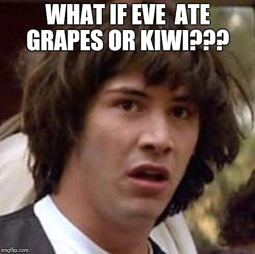 Conspiracy Keanu Meme | WHAT IF EVE  ATE GRAPES OR KIWI??? | image tagged in memes,conspiracy keanu | made w/ Imgflip meme maker