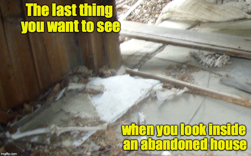Thankfully, upon closer inspection, it was only a deer. |  The last thing you want to see; when you look inside an abandoned house | image tagged in bones,old house | made w/ Imgflip meme maker