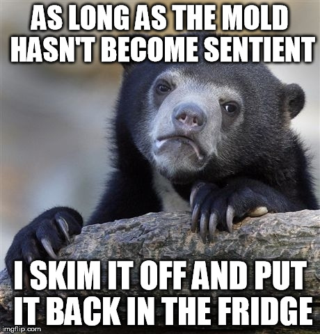 Confession Bear Meme | AS LONG AS THE MOLD HASN'T BECOME SENTIENT I SKIM IT OFF AND PUT IT BACK IN THE FRIDGE | image tagged in memes,confession bear | made w/ Imgflip meme maker