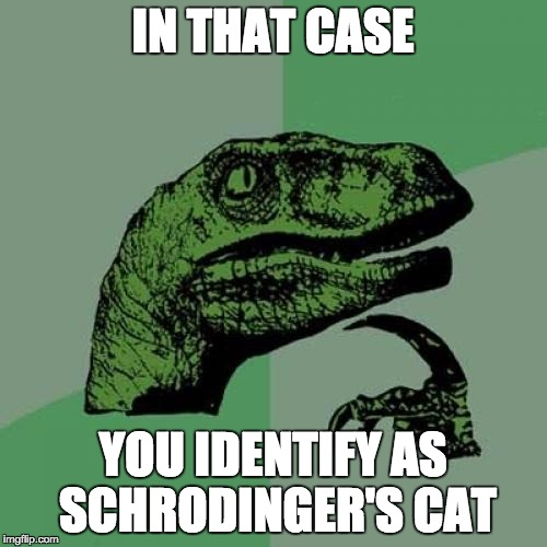 Philosoraptor Meme | IN THAT CASE YOU IDENTIFY AS SCHRODINGER'S CAT | image tagged in memes,philosoraptor | made w/ Imgflip meme maker